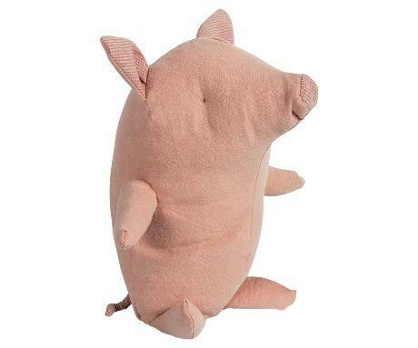 Pig, Truffle, Baby