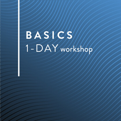 BASICS CLASS - ONE-DAY Business Owners Workshop
