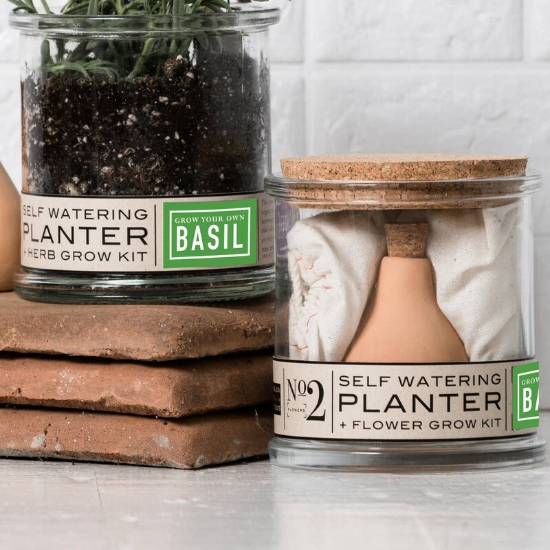 Basil Self-Watering Grow Kit