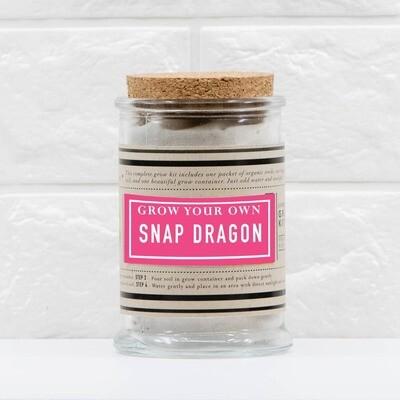 Mini Snapdragon Grow Kit