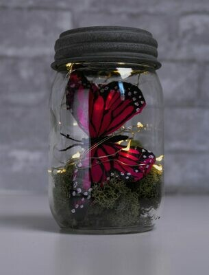 Seasonal Angel Tears Jar Kit