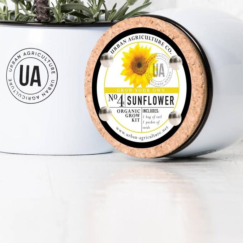 Sunflower Enamel Grow Kit