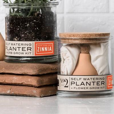 Zinnia Self-Watering Grow Kit