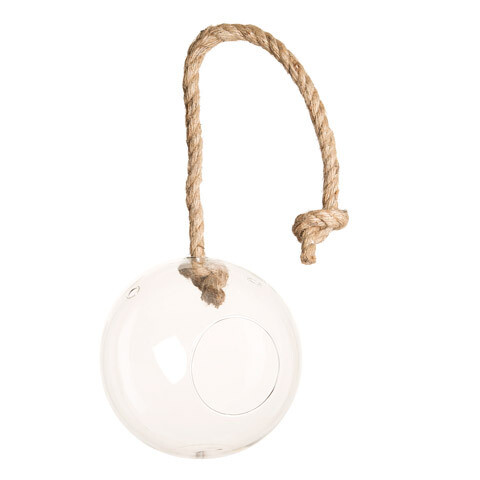 Round Hanging Terrarium with Rope 7 inch