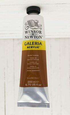 Winsor & Newton Galeria Acrylic 200 ml tube Burnt Sienna