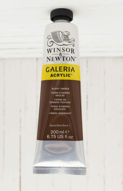 Winsor & Newton Galeria Acrylic 200 ml tube Burnt Umber