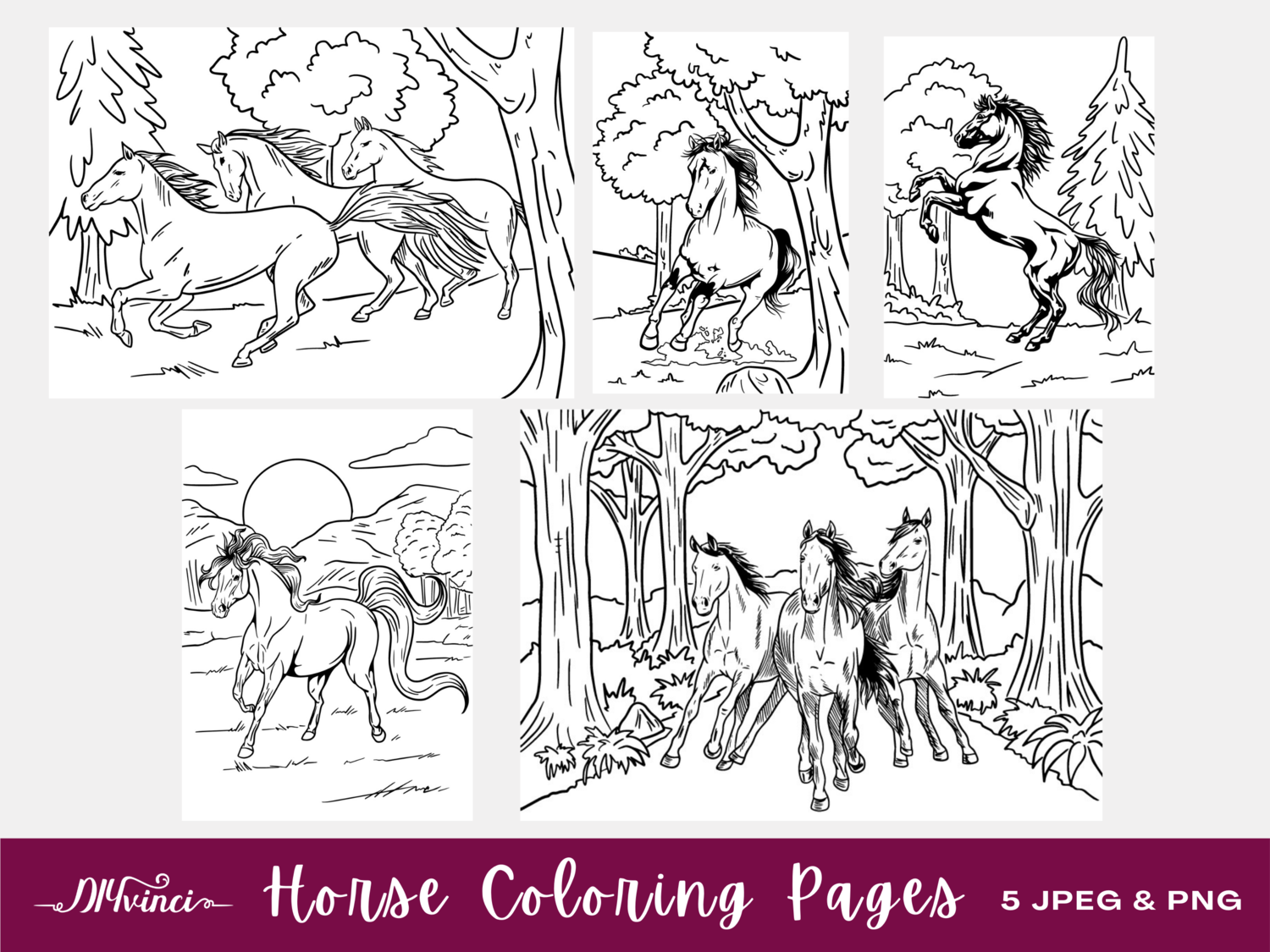 5 Wild Horse Printable Coloring Pages - JPEG & PNG - Personal and Commercial Use