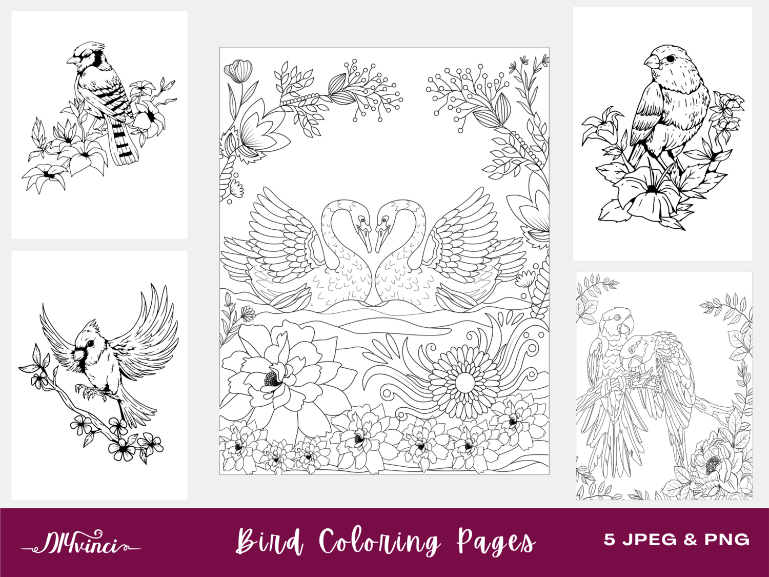 Bird Printable Coloring Pages - 5 JPEG & PNG - Personal and Commercial Use