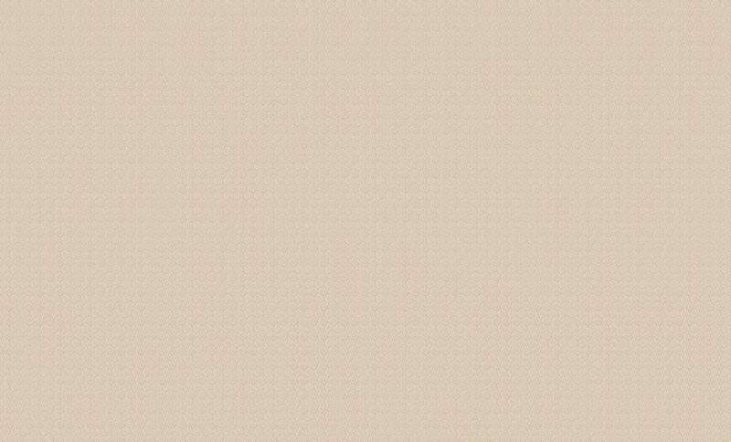 4556-3 Обои Эриманн флиз. 1,06м*10м