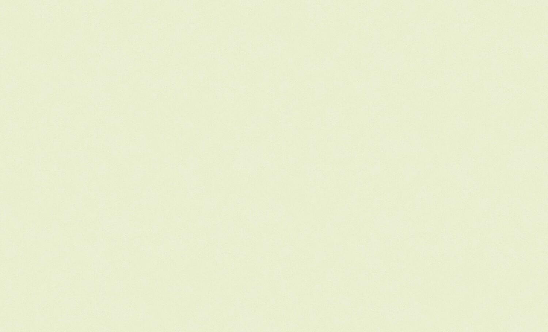 4544-8 Обои Эрисманн флиз. 1,06м*10м