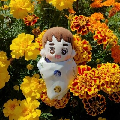 10 cm Ddooring Doll by @mylittleddoorin