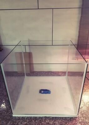 56L Cube Aquarium