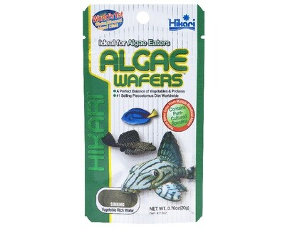 Hikari Tropical ALGAE WAFERS (82g)