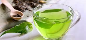 Organic Tea Options