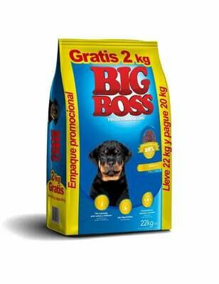Big Boss Adulto 20 Kg + 2kg