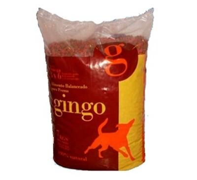 Gingo Adulto 7 kg
