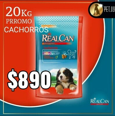 Real Can Cachorros 20 Kg