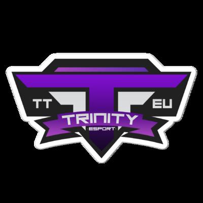 TTeu.org Logo Bubble-free stickers