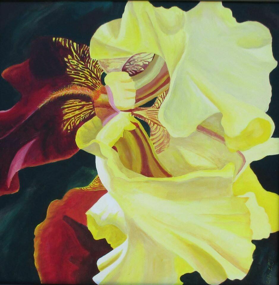 """""""J.J,'s Iris"""", acrylic on canvas, 24""""x24"""", framed."""