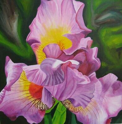 """Springtime Iris"", acrylic on gallery wrap canvas, 30""x30"""