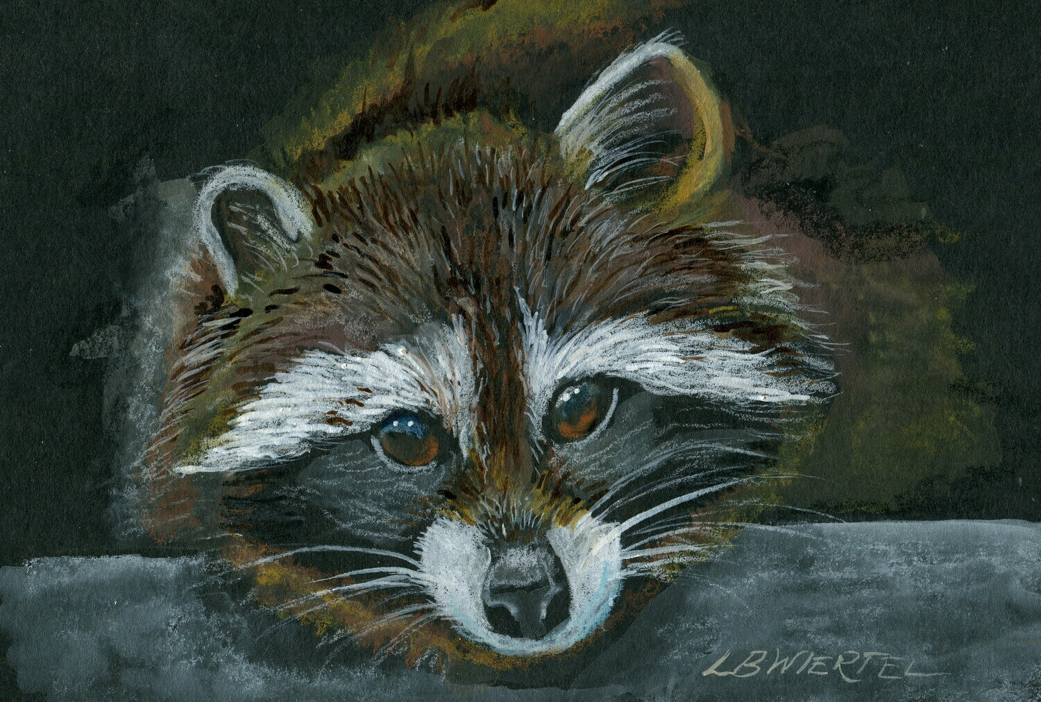 "Racoon, Mixed Media Drawing, 5""x7"""