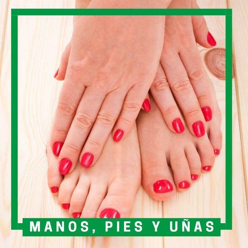 Manos, pies y uñas