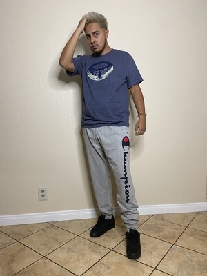 CHAMPION GRAY PANTS SOLID LTRS