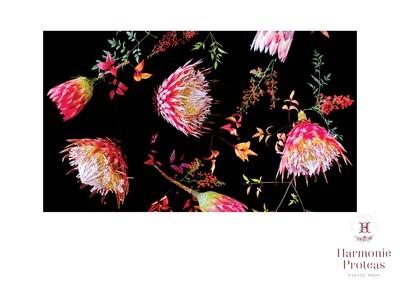 Table Cloth - Protea pink & Black