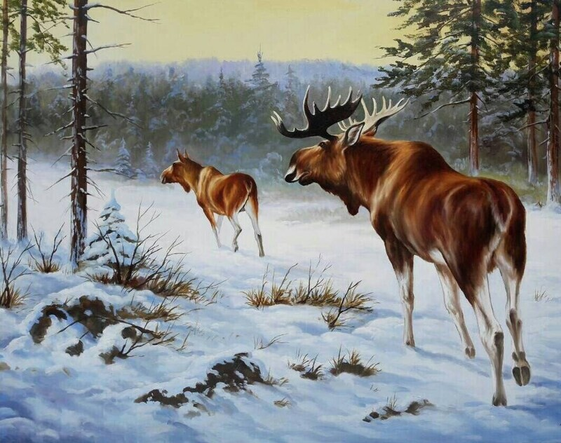 Moose in Winter Oil on canvas Made to Order. Original Handpainted fine art GREAT Price