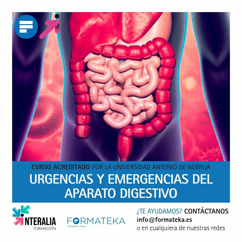 Urgencias y emergencias del aparato digestivo - 100 Horas - 4 Créditos CFC