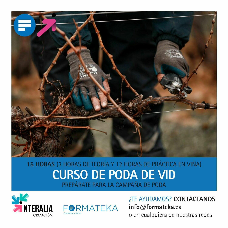 Curso de poda de vid (en La Rioja)