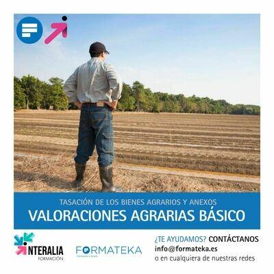 Curso online de Valoraciones Agrarias básico (20 Horas)