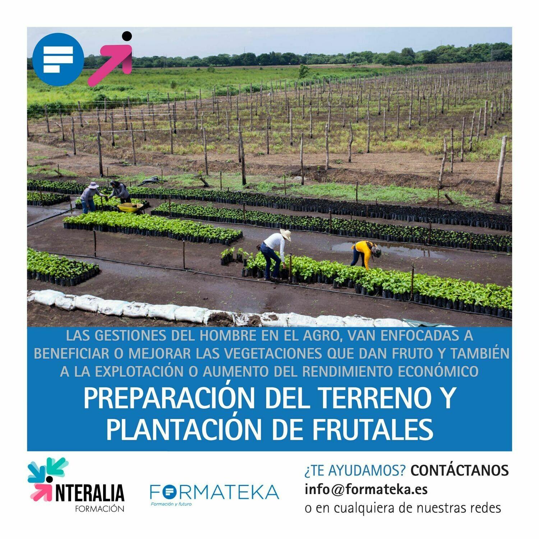 Preparación del terreno y plantación de frutales (50 Horas)