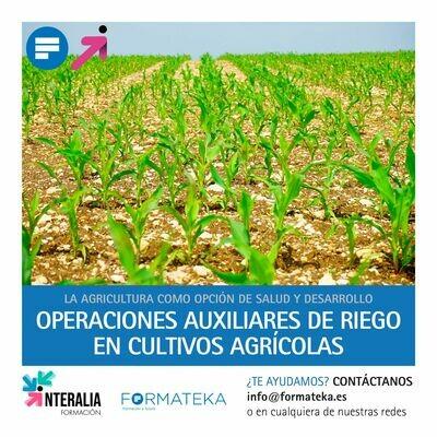 Operaciones auxiliares de riego en cultivos agrícolas (30 Horas)