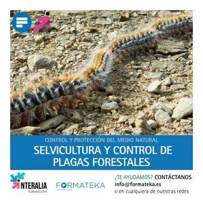Selvicultura y control de plagas forestales (20 Horas)