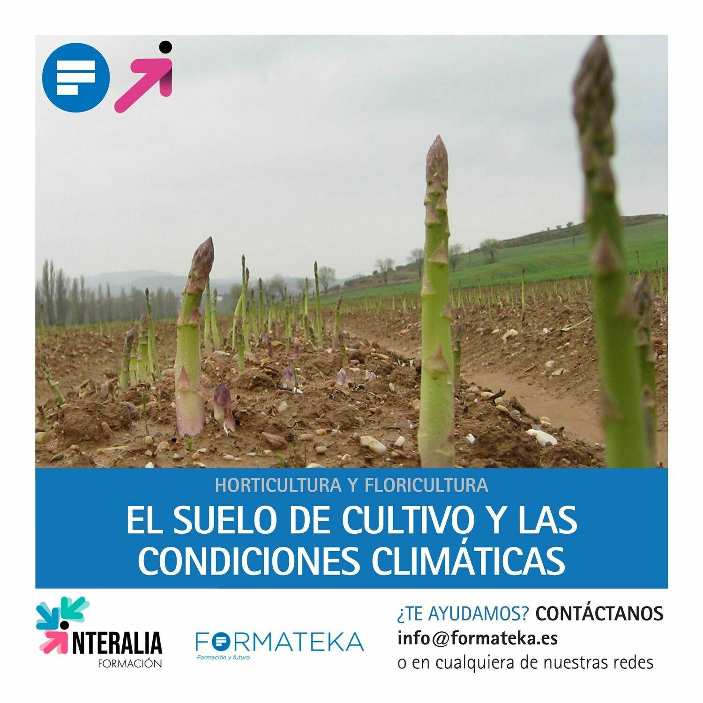 El suelo de cultivo y las condiciones climáticas (20 Horas)