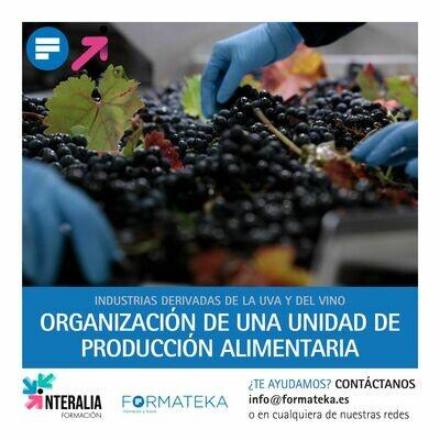 Organización de una unidad de producción alimentaria (20 Horas)