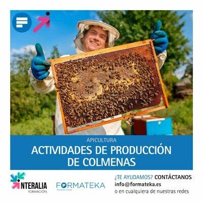 Actividades de producción de colmenas (20 Horas)