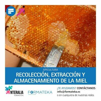 Recolección, extracción y almacenamiento de la miel (20 Horas)