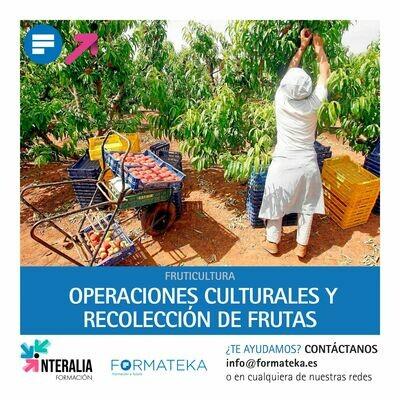 Operaciones culturales y recolección de frutas (60 Horas)