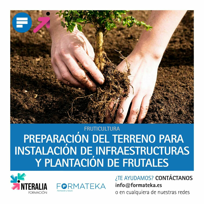 Preparación del terreno para instalación de infraestructuras y plantación de frutales (30 Horas)