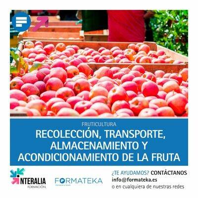 Recolección, transporte, almacenamiento y acondicionamiento de la fruta (20 Horas)