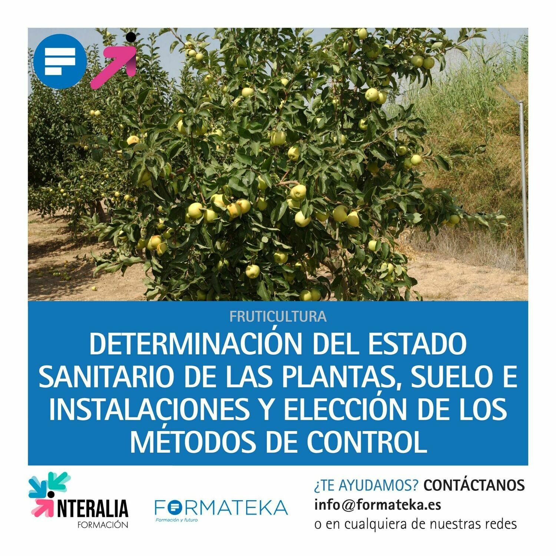 Determinación del estado sanitario de las plantas, suelo e instalaciones y elección de los métodos de control (20 Horas)