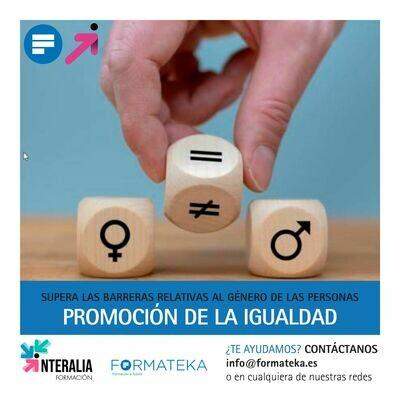 Promoción de la igualdad (6 Horas)