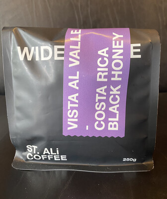 "St. Ali ""Vista Al Valle"" Costa Rica ~ 250gm Coffee Beans Single Origin"