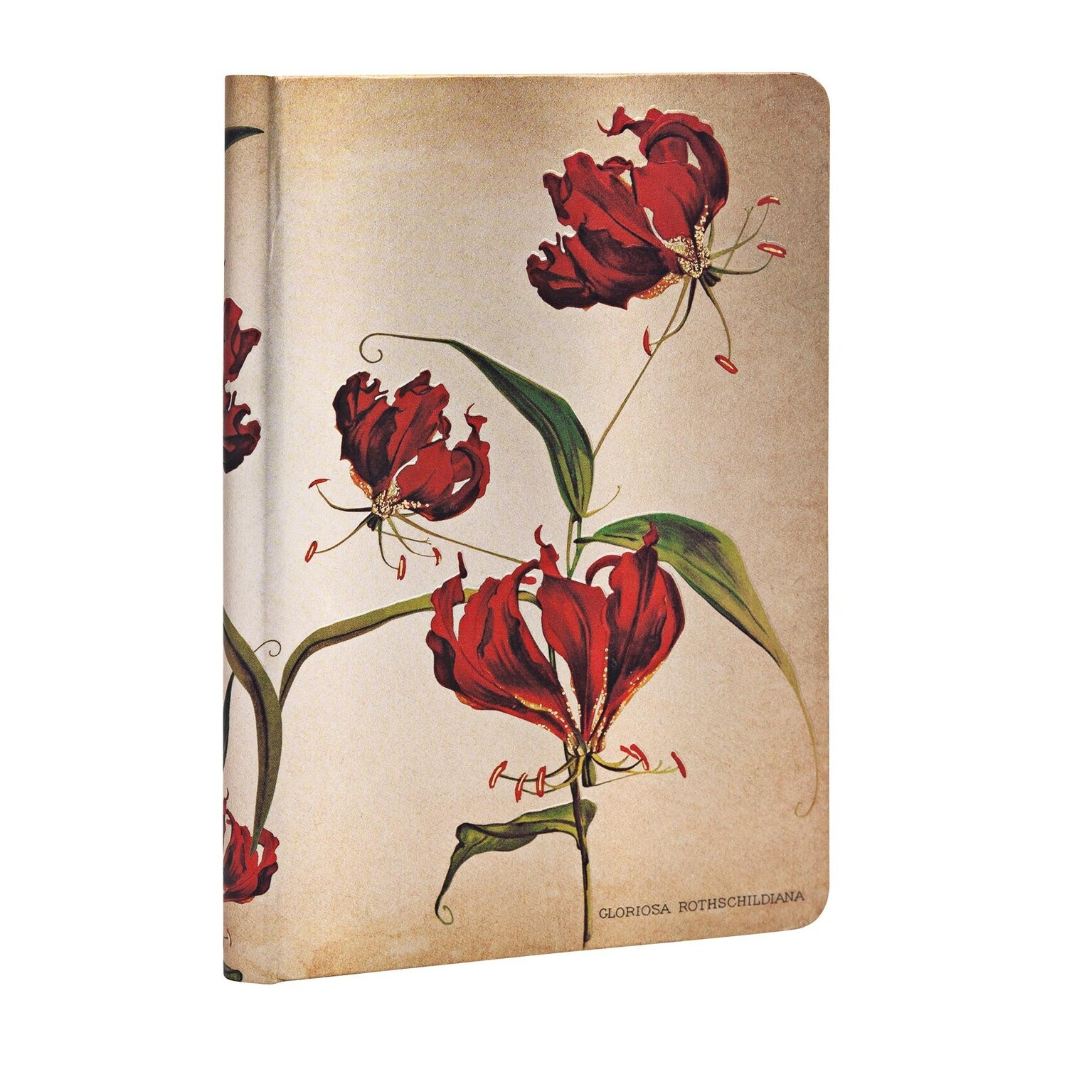 Journal, Lined, Mini Hardcover Gloriosa Lily - Painted Botanicals