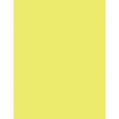Cardstock, 65lb, Letter Lemon, 250 Pack, Earthchoice