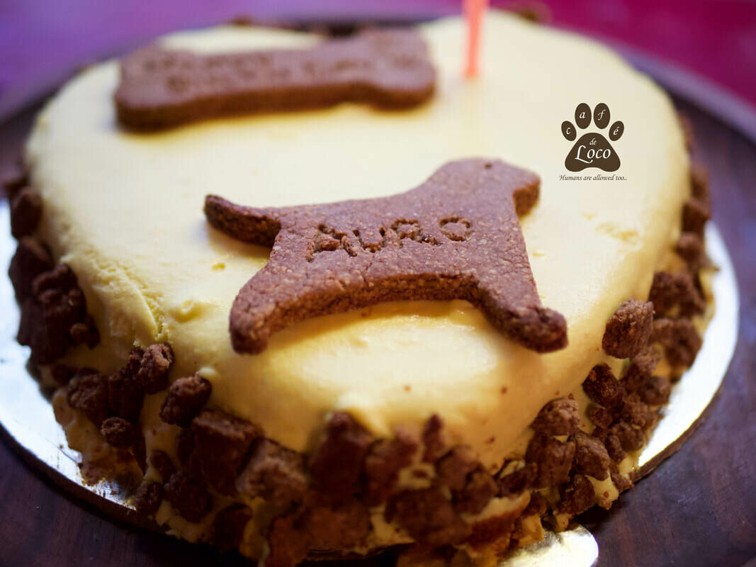 Heart Icing dog cake with side decoration