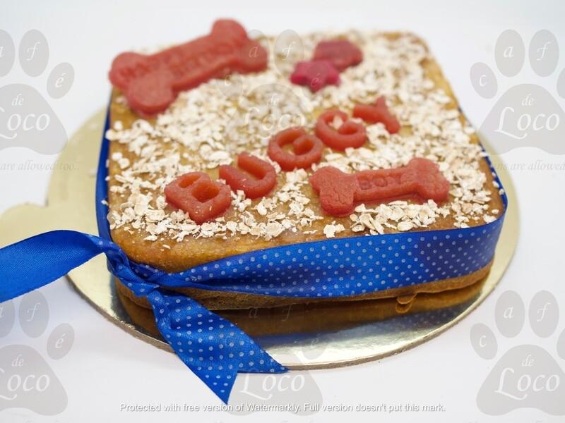 Square Non Icing dog cake