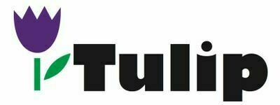 Tulip Online